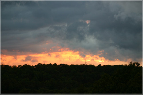 saulelydis.jpg
