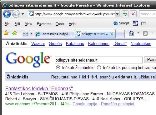 google-cache.jpg