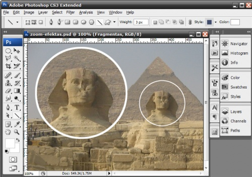zoom-tutorial-11.jpg