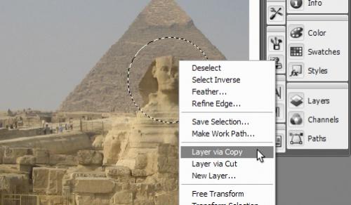 zoom-tutorial-3.jpg