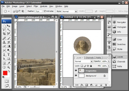 zoom-tutorial-6.jpg