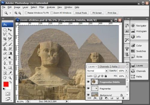zoom-tutorial-9.jpg