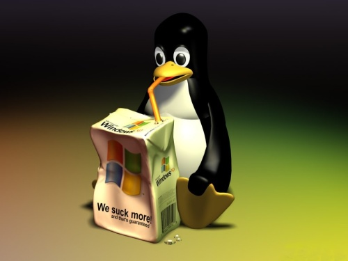 Linux ir Windows